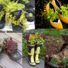 Wat doe je met oude schoenen? Plant ze in je tuin!