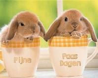 Fijne Pasen!